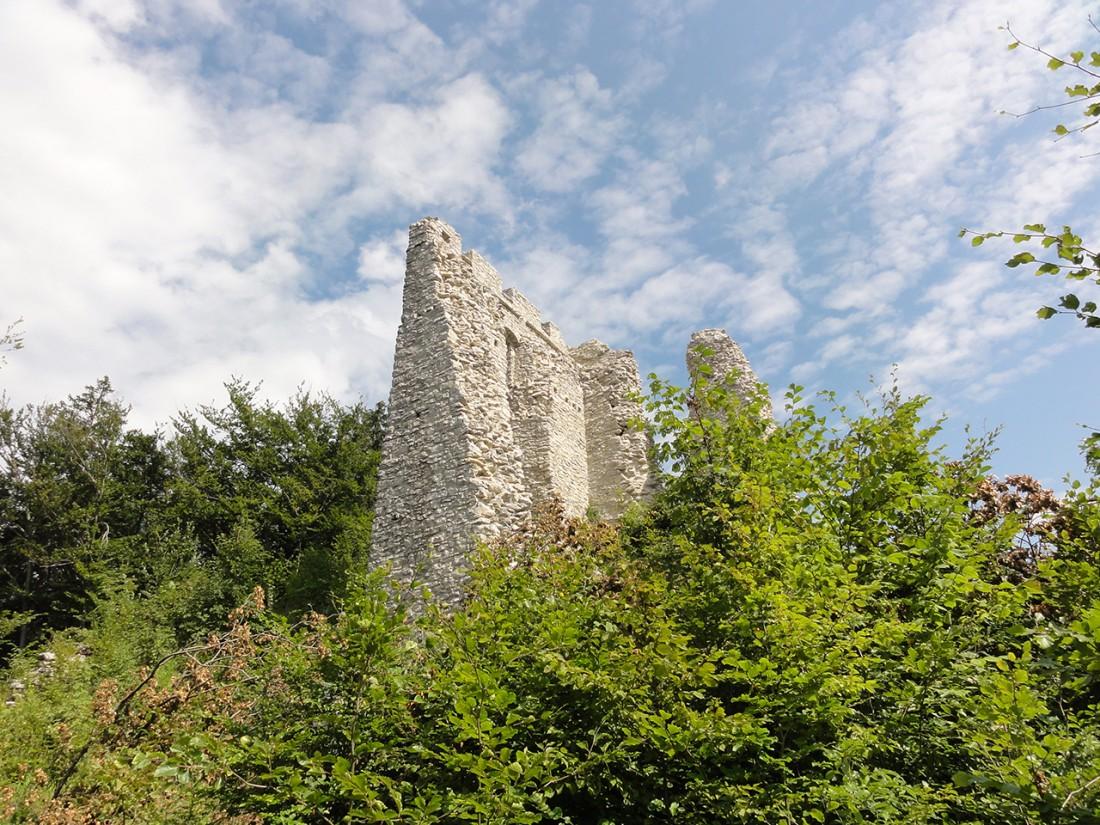 Arnoweg: Ruine der Burg Thürndl