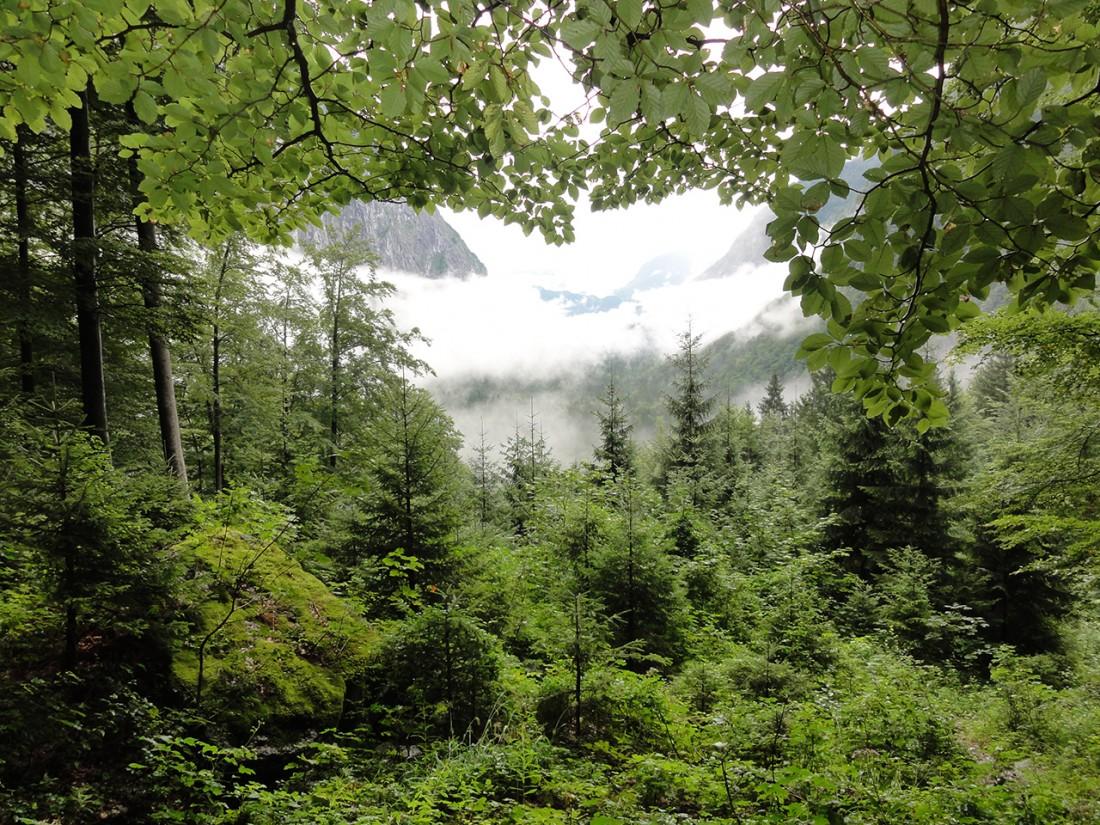 Arnoweg: Ausblick zurück über das Bluntautal