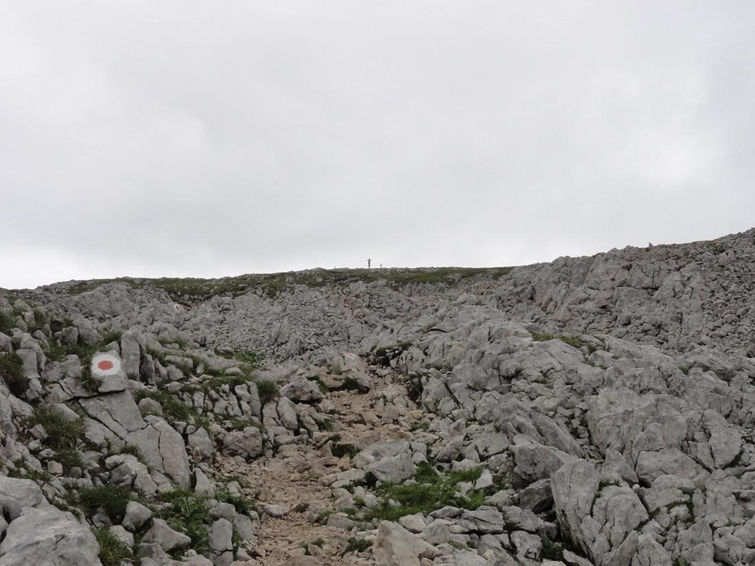 Arnoweg: Aufstieg auf den Schneibstein