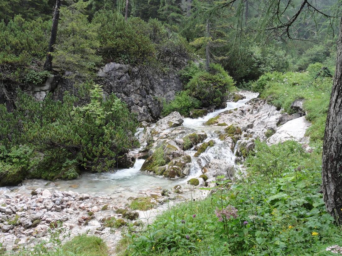Arnoweg: Malerischer Gebirgsbach Richtung Dießbach-Stausee