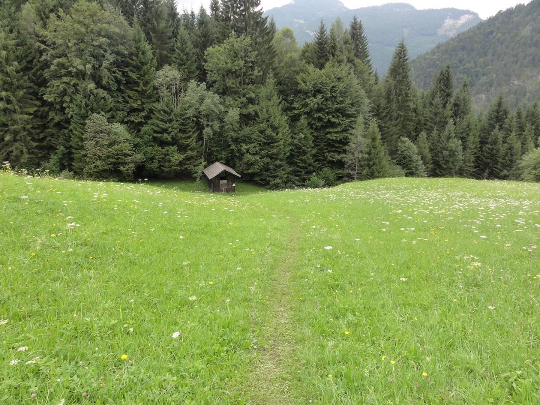 Arnoweg: Abstieg über Wiesen Richtung Au bei Lofer