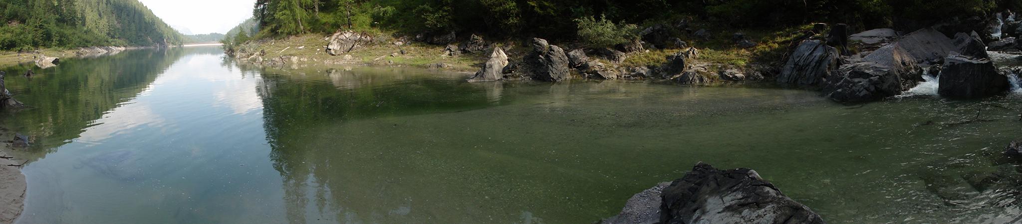 Arnoweg: Die Flussmündung am Dießbachstausee