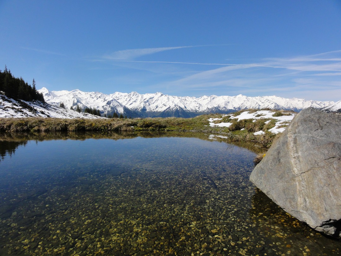 Arnoweg: Herrliches Panorama über die schneebedeckten Hohe Tauern