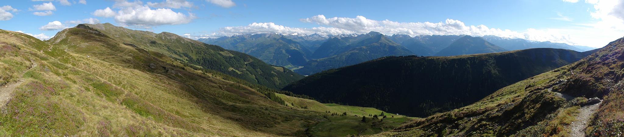 Arnoweg: Der Pinzgauer Spaziergang führt über die wunderschönen und sanft geprägten Pinzgauer Grasberge.