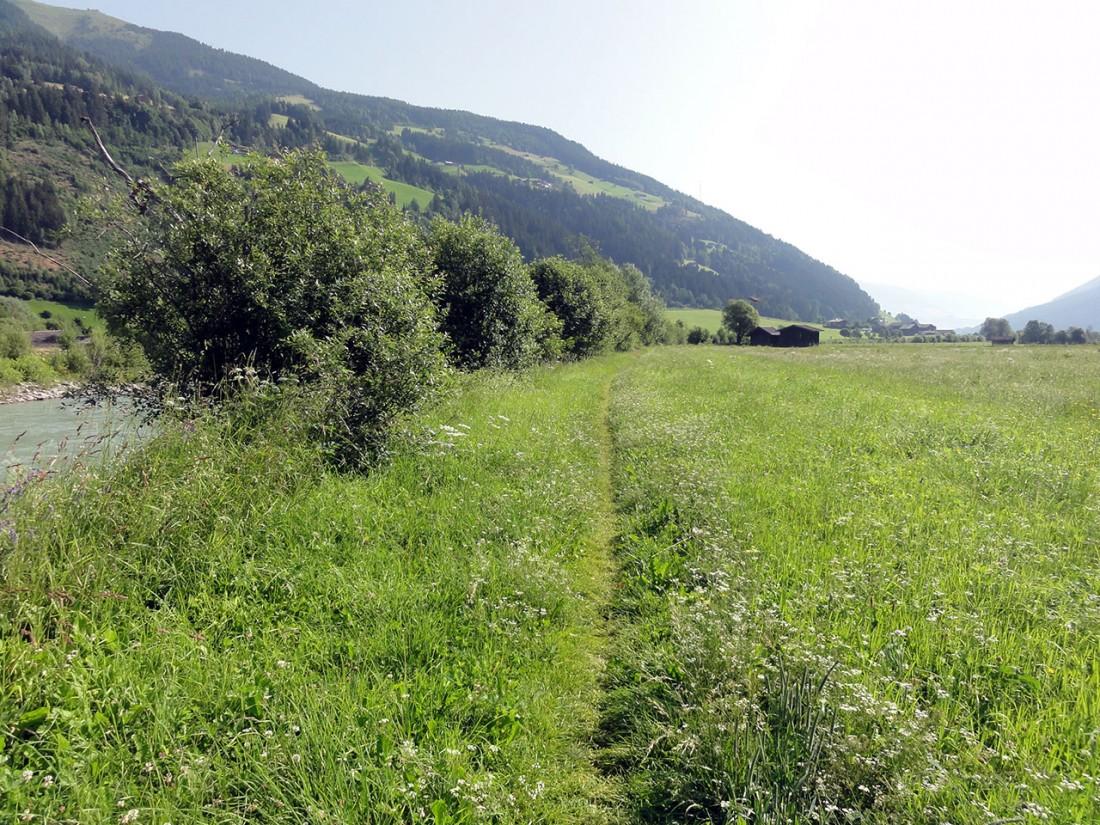 Arnoweg: Fußweg entlang der Salzach
