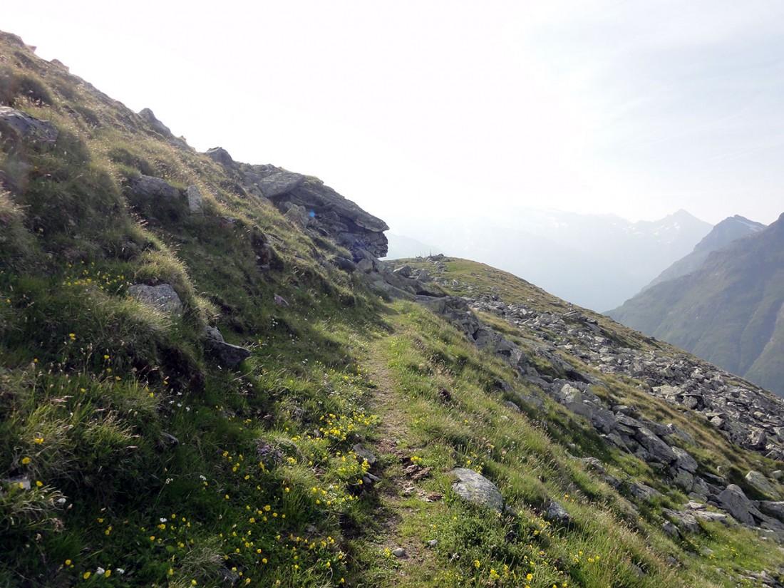 Arnoweg: Herrliche Höhenwanderung entlang des St. Pöltner Westweg