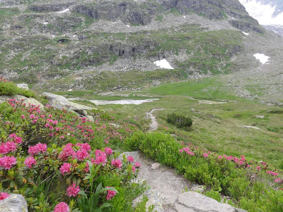 Arnoweg: Von der Rudolfshütte geht es über die Steinerne Stiege zum Tauernmoosstausee.