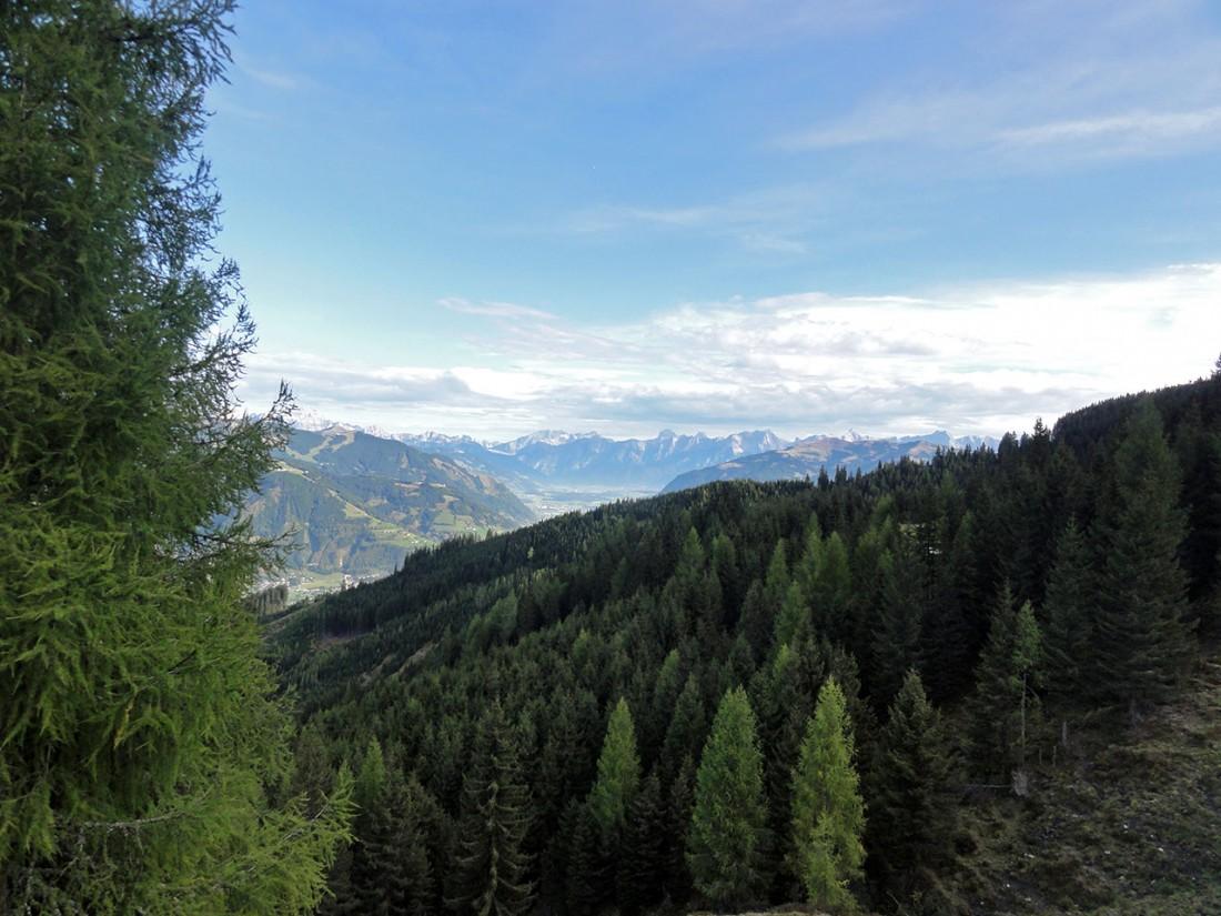 Arnoweg: Auf der Piffscharte am Rande der Baumgrenze hat man einen großartigen Ausblick zum Zeller See Richtung Norden.
