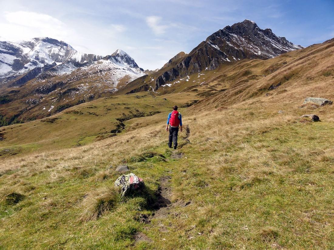 Arnoweg: Der Weg zur Gleiwitzer Hütte verläuft sanft bergan.