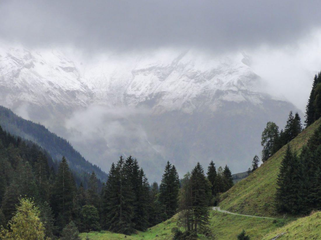 Arnoweg: Der verschneite Blick ins Käfertal