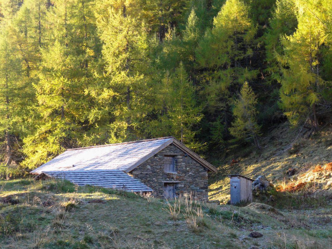 Arnoweg: Die Trogalm im Herbstkleid