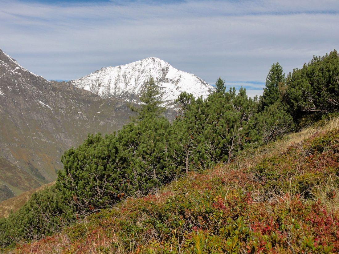Arnoweg: Der prächtige Ritterkopf (3.006 m) im weißen Kleid