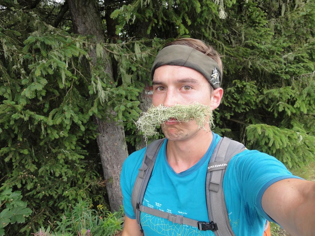 Arnoweg: Ob sich Baumflechten als Bartersatz bewähren?