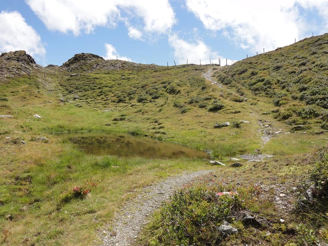 Arnoweg: Der Pinzgauer Spaziergang führt über die sanften Grasberge nördlich des Salzachtals.