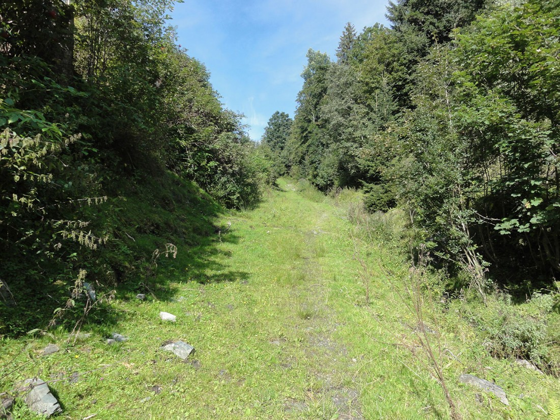 Arnoweg: Noch vor Mittersill dreht der Arnoweg nach Westen wieder bergauf zum Pass Thurn.