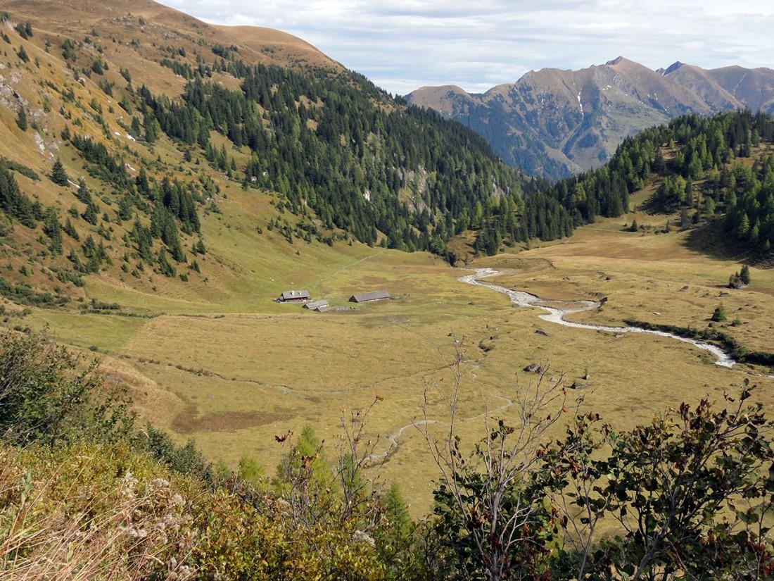 Arnoweg: Der Almboden der Hirzbachalm