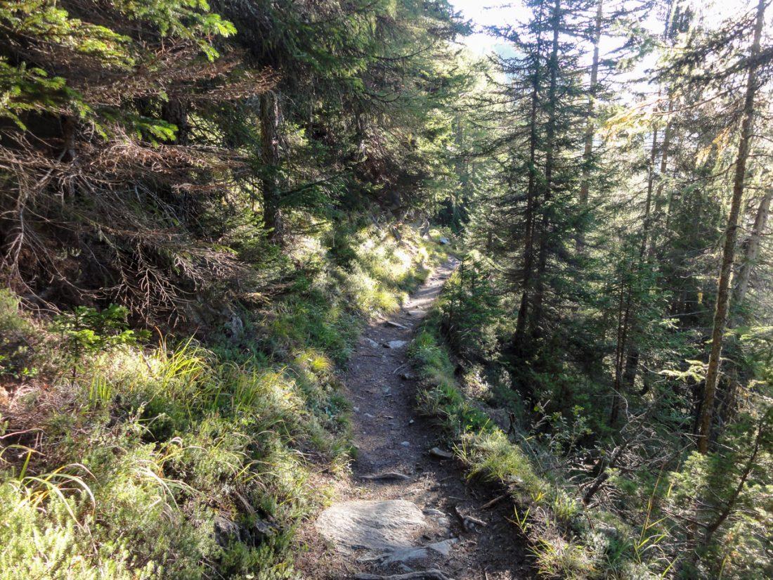 Arnoweg: Der Abstieg nach Heiligenblut über den Haritzer-Steig