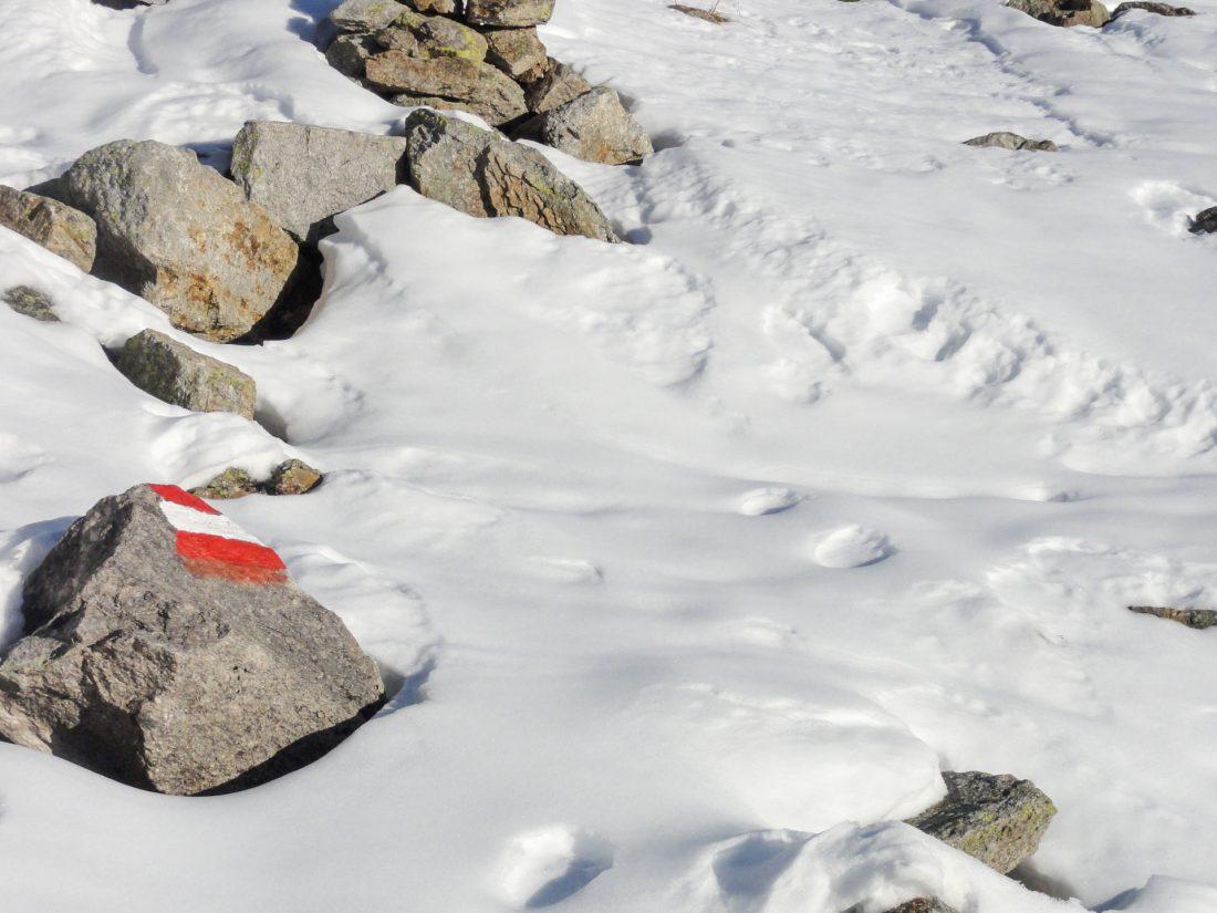 Arnoweg: Am Weg tauchen plötzlich sehr spezielle Fußabdrücke auf.
