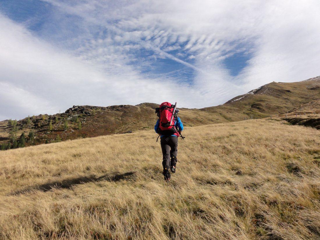 Arnoweg: Aufstieg über Grasböden im Windspiel Richtung Riffelscharte