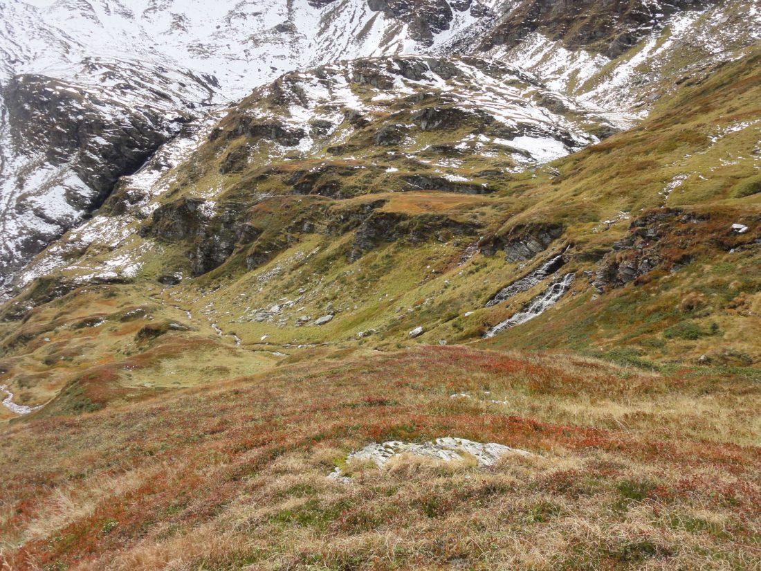 Arnoweg: Einmal mehr steigt man durch herbstliche Grasböden in bunten Farben ab.